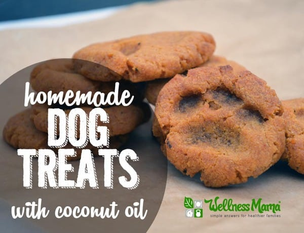 Homemade Dog Treats (With Coconut Oil)