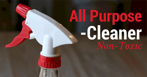 All Purpose Germ Fighting Cleaner Simple Pure Beauty