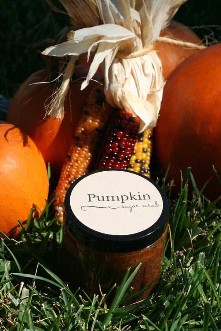 DIY Pumpkin Sugar Scrub Recipe | SimplePureBeauty.com