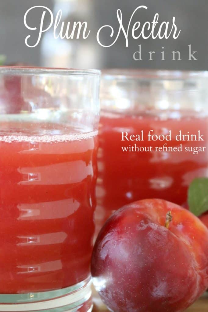 Take summer's fresh plums and create this amazing, thick Plum Nectar. This recipe is so simple and uses the entire flesh to keep you hydrated and nourished.