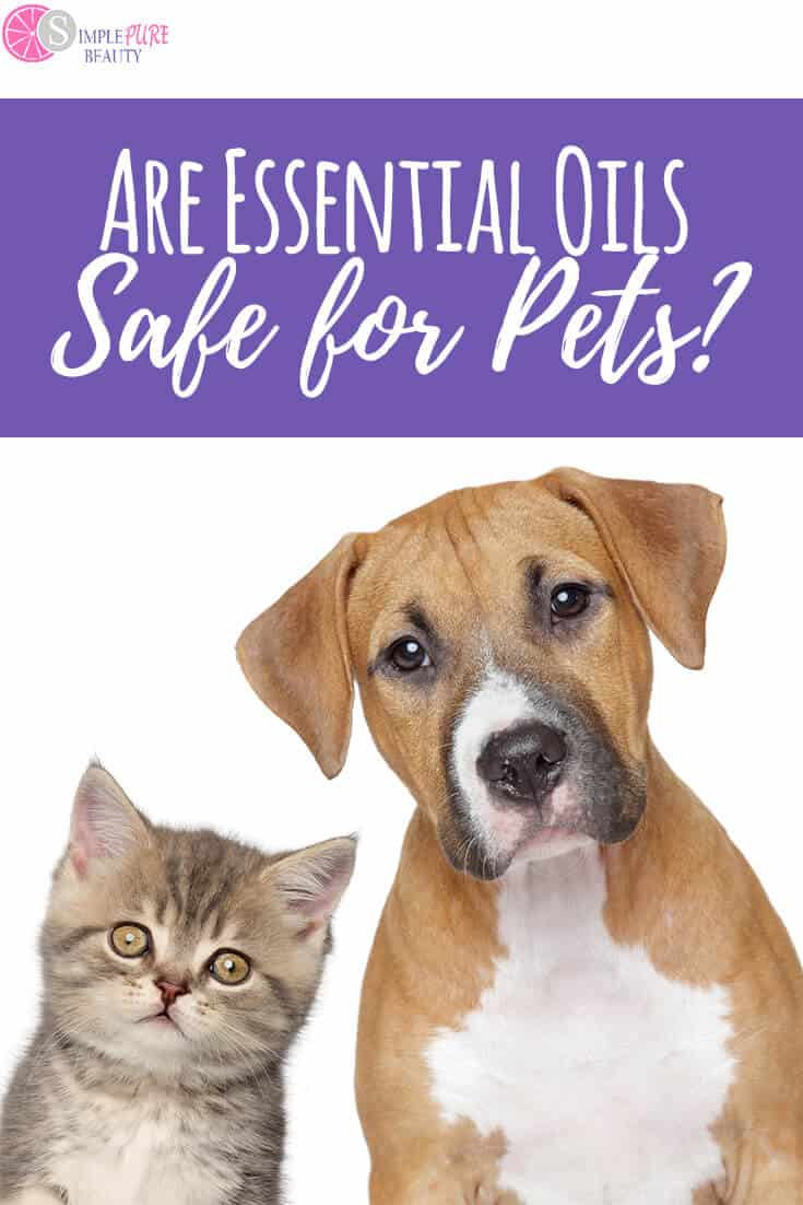 Essential oils and pets - are they safe? You love them for yourself but can your pet be in the same room? Learn safety precautions here! #essentialoils #YoungLiving #pets
