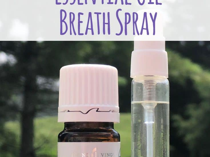 Bad breath is embarrassing and not talked about. This easy DIY breath spray is cheap and effective. #essentialoils #DIY #mint