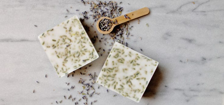 DIY Lavender Goat Milk Hand Soap