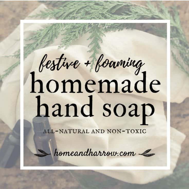 Festive Homemade Foaming Hand Soap ~ Home & Harrow