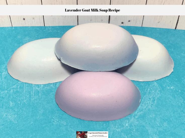 Lavender Goat Milk Soap Recipe