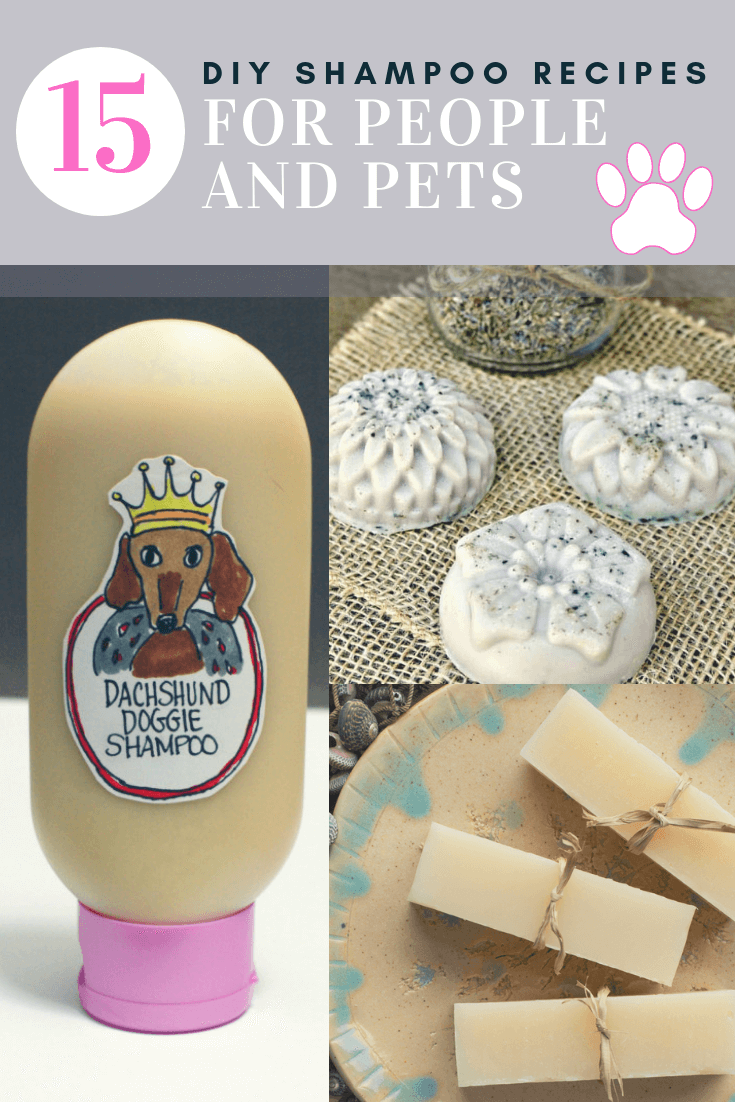 15 DIY Shampoo Recipes for People and Pets!