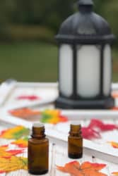 Essential oil diffuser with fall diffuser blends