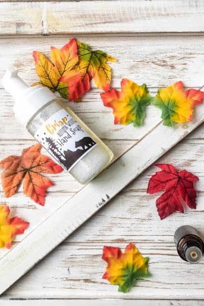 Autumn Woods Fall Foaming Hand Soap Recipe