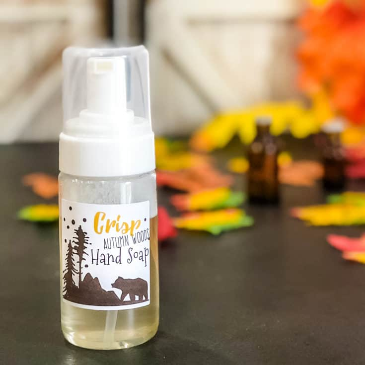 Autumn Woods Fall Foaming Hand Soap Recipe Simple Pure