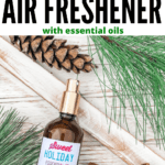 DIY-Cinnamon-Air-Freshener-with-Essential-Oils