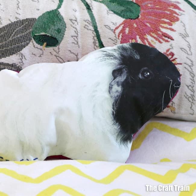 DIY pet pillow