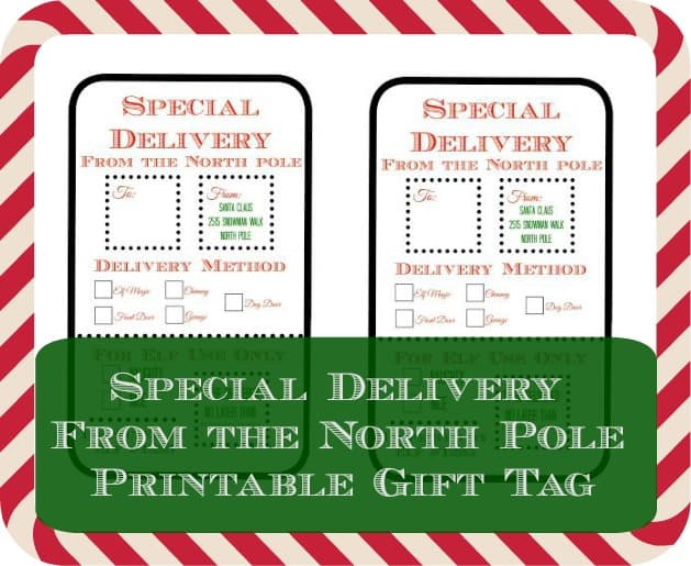 Special Delivery From the North Pole Printable Gift Tag