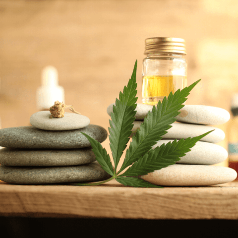 CBD Massage Oil Recipe