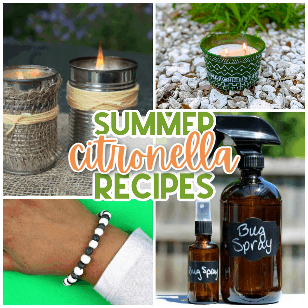 citronella recipes to keep bugs away