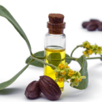 Jojoba Oil Skincare Benefits