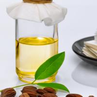 Jojoba Oil Skincare Benefits