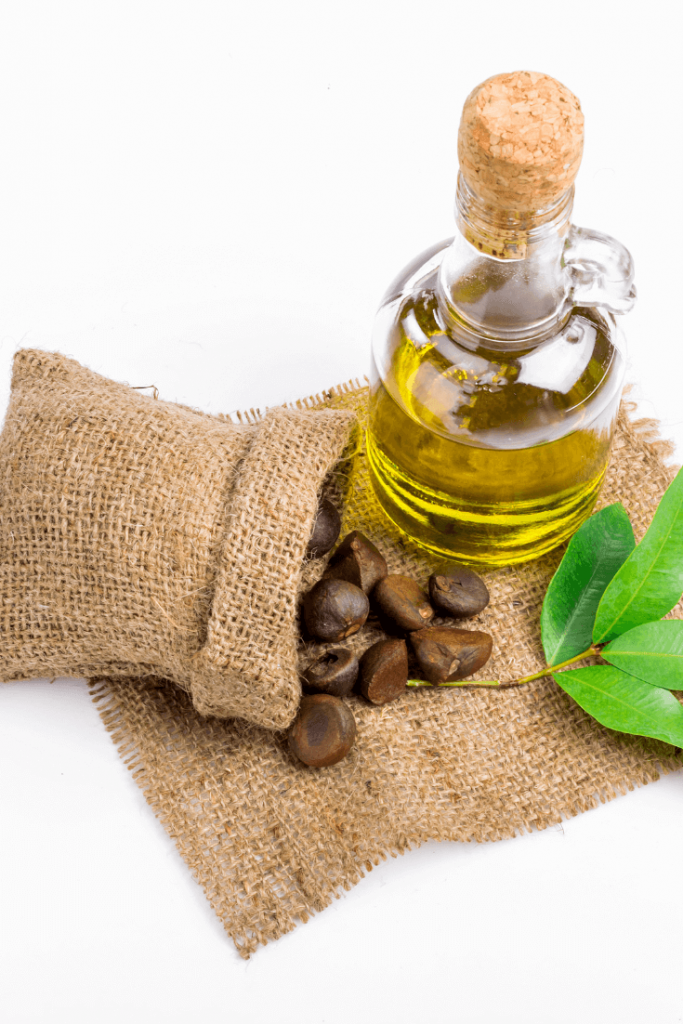 Camellia Seed Oil Benefits for Skin