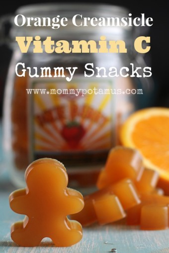Orange Creamsicle Vitamin C Gummy Snacks